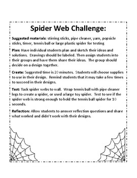Spider Webs: Stem