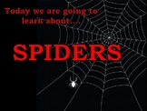 Spider Week PowerPoint KWL Preschool Kindergarten Response