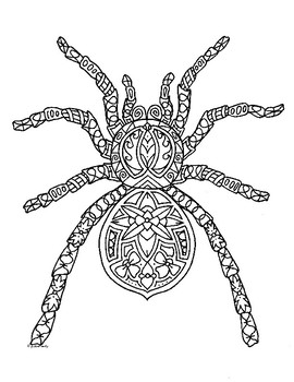 Spider Zentangle Coloring Page