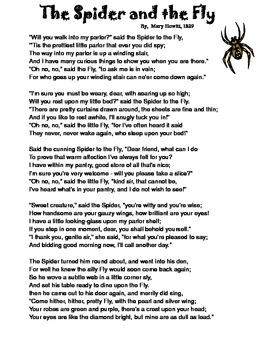 Spider and The Fly (2-3)