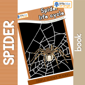 Spider life cycle book