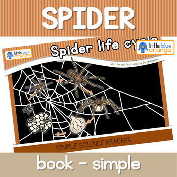 Spider life cycle book (simple version)