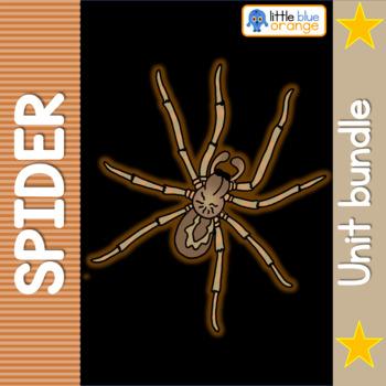 Spider life cycle bundle
