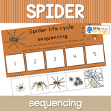 Spider life cycle sequencing activity worksheet