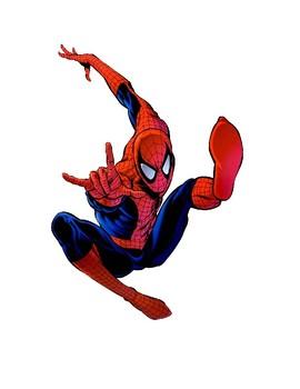 Spiderman Reward