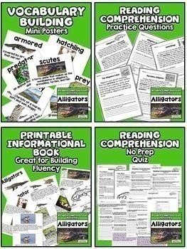Reading Comprehension Passages HUGE $$$ Savings BUNDLE for Grades 3-4