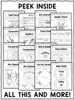 Spider Interactive Notebook Activities
