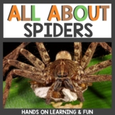 All About Spiders Unit Study