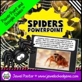 Science Halloween Activities (Spiders PowerPoint)