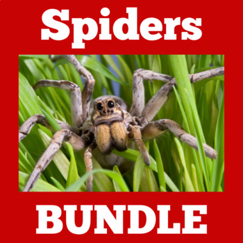 Spiders Activities | Spiders Science | Spiders Unit | Spiders Halloween
