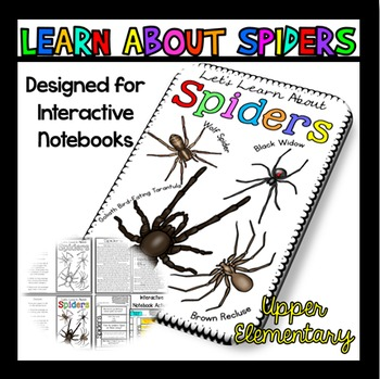 All About Spiders: Spiders Reading Passage: Perfect for Interactive Notebook
