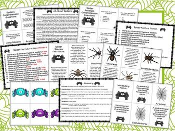 Spiders: A Book Companion