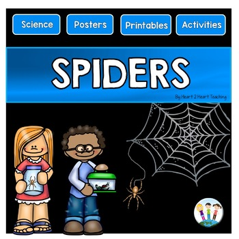 Spiders: All About Spiders Activity Pack for Science Centers and Fall Activities