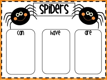 Spiders: A Thematic Unit