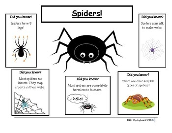 Spiders! Adapted Work Packet