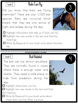 Nonfiction Leveled Reading Passages and Questions - Spiders Bats Pumpkins