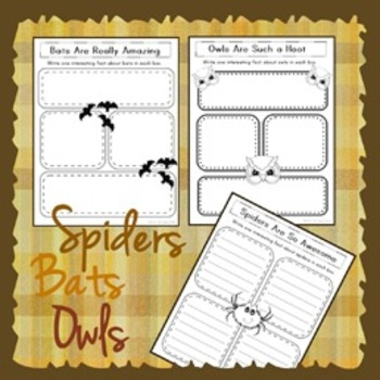 Spiders, Bats, and Owls ... Oh My