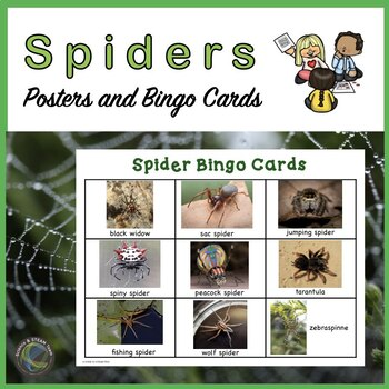 Spiders Bingo and Posters