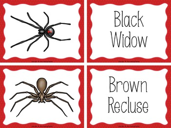 Spiders Book to Cut and Create, Matching Cards for Centers, and Posters