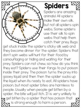 Spiders Close Reading Practice