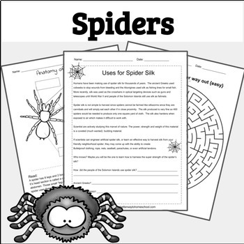 Spiders: Crawling Into the World of this Amazing Arachnid
