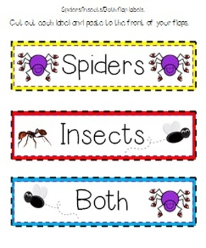 Spiders: Cross-Curriculum Resources
