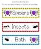 Spiders: Cross-Curriculum Resources