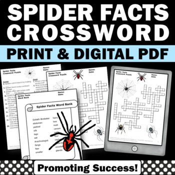 Spider Worksheets, Halloween Crossword Puzzle