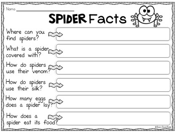 Spiders Informational Fact Cards