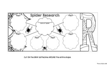 Spiders | Distance Learning