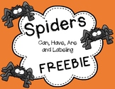 Spiders Freebie