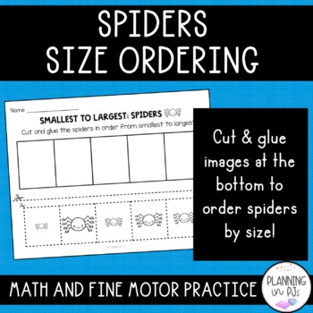 Spiders Size Ordering (From Smallest to Largest)