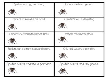 Spiders- Halloween Fun