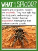 Spiders {Nonfiction, Writing, Literacy Centers, Word Work, Reading}