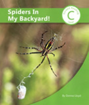 Spiders In My Backyard Book