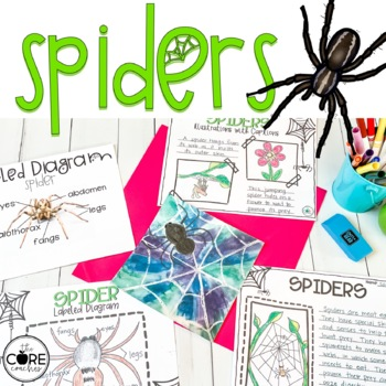 Spiders: Informational Interactive Read-Aloud Lesson Plans and Activities
