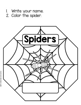 Spiders Interactive Reader