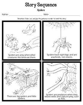 Spiders (Kindergarten Topic Unit 9)