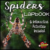 Spiders Lapbook