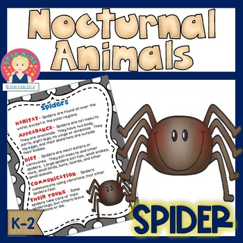 Spiders - Nocturnal Animals