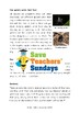 Spiders Non-fiction Text Comprehension / Guided reading (4 levels difficulty)