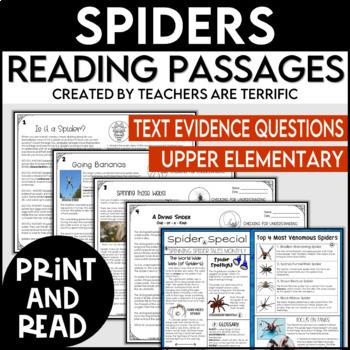 Spiders Print & Read