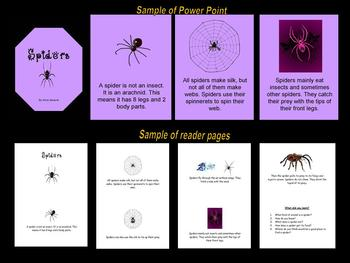 Spiders - Resource/Activity Set