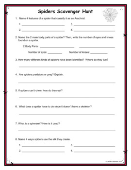 Spiders Scavenger Hunt