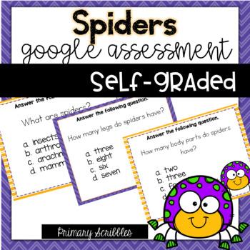 Spiders Self-Graded Google Assessment
