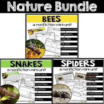 Spiders, Snakes, Bees Nature Bundle: CUSTOM BUNDLE