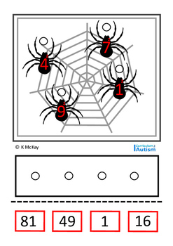 Square Numbers Spider Theme Autism Special Education