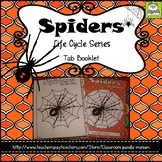 Spiders Life Cycle Tab Booklet