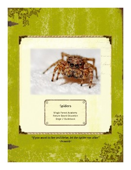 Spiders Themed Nature Education Unit-Stage 2 (Magic Forest Academy)