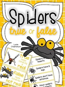 Spiders - True or False